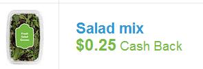 checkout 51 salad