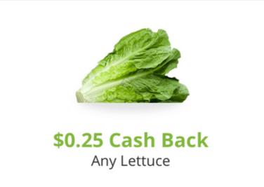 snap lettuce offer