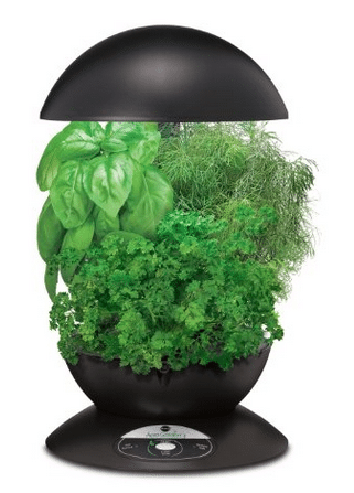 aerogarden herb kit amazon