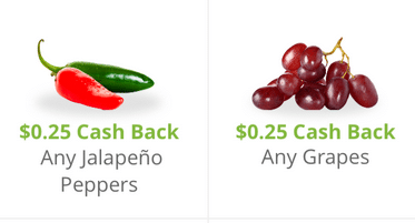 organic produce coupon offers