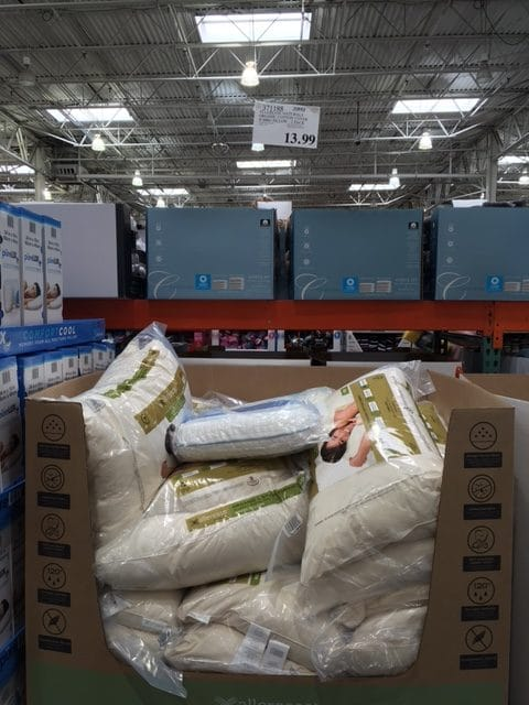 organic pillow costco