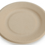 earth's natural tree free plates
