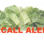 lettuce recall organic