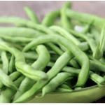 free tasty bite green beans seeds organic